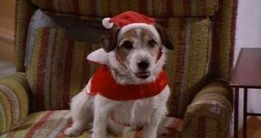 Eddie as Santa