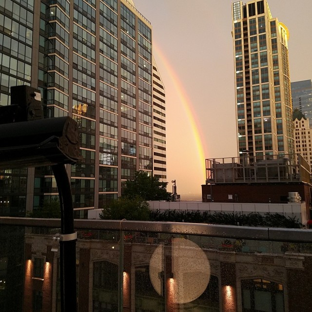 chicago virgin rainbow